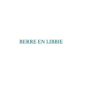 Beveiligd: berre en libbie